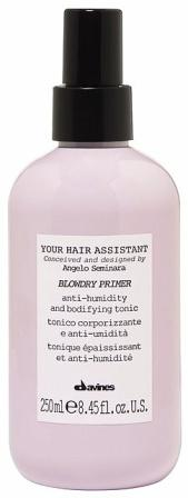 Davines YOUR HAIR ASSISTANT BLOWDRY PRIMER / Спрей-праймер для укладки волос 250 ml. 88006